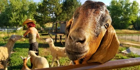 Open Farm Days- Rescued Friends Animal Sanctuary tickets