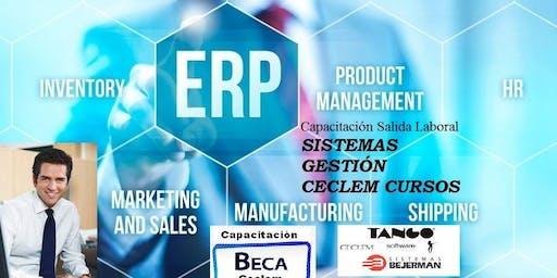 Operador Sistemas ERPs TANGO BEJERMAN SIAP Aplicativos, Excel