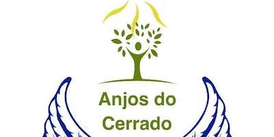 Plante Árvores pelo Brasil!