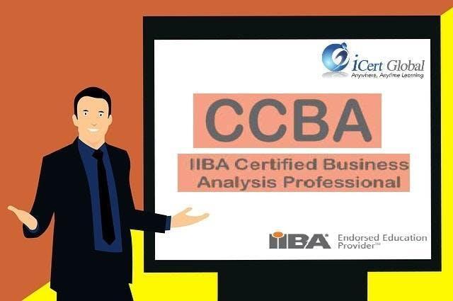 CCBA Classroom Training in Lincoln, NE