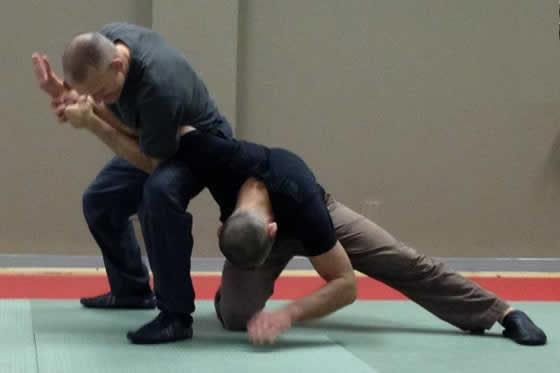 Steve Maxwell's Gracie Core Concepts
