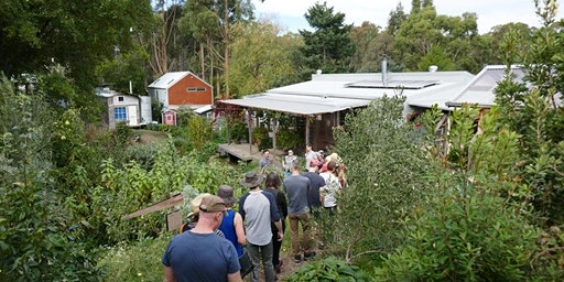 Permaculture house + garden tour