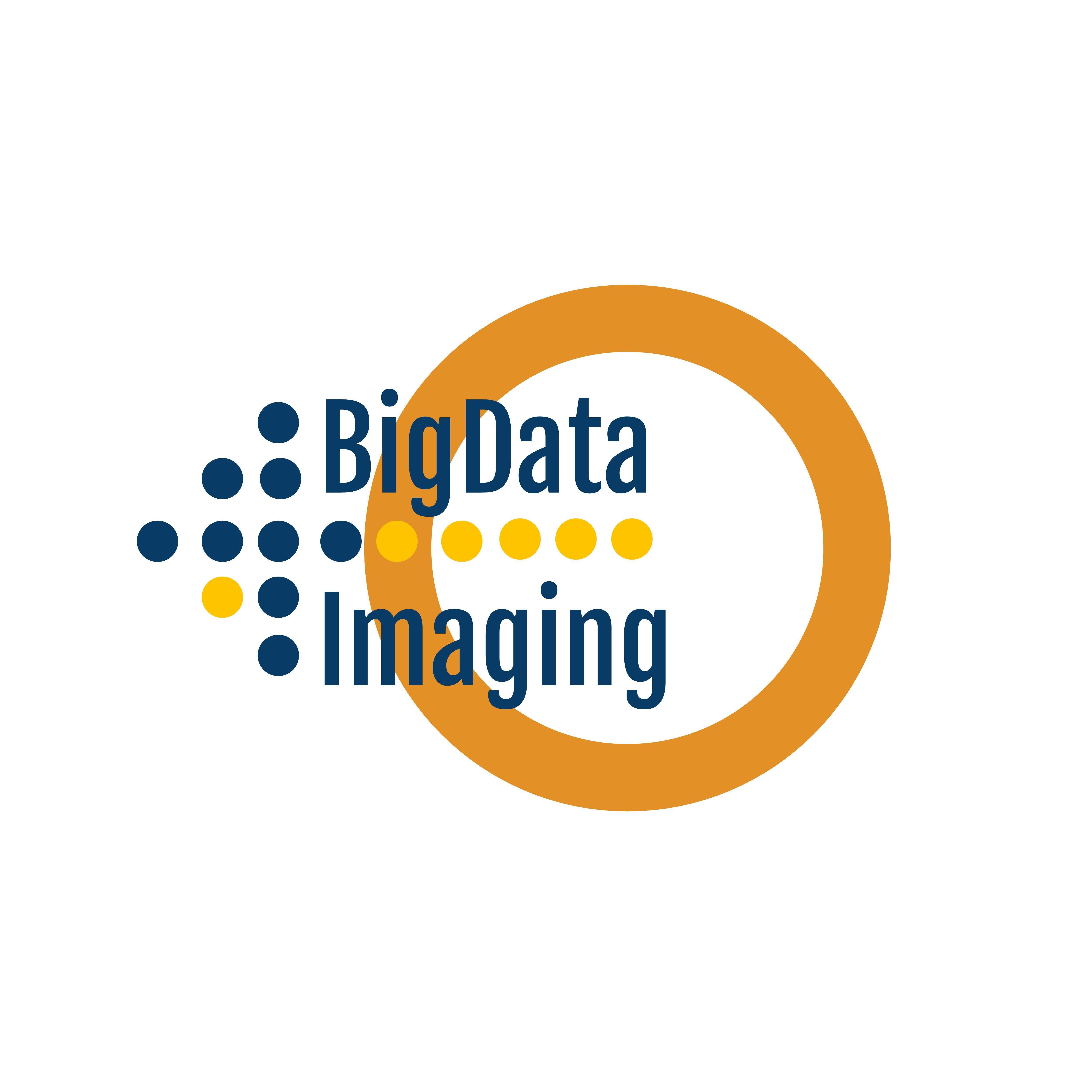 BigData4Imaging