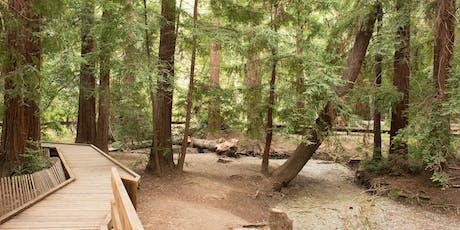 Grove Guardians: Summer Youth Stewards at Redwood Grove tickets