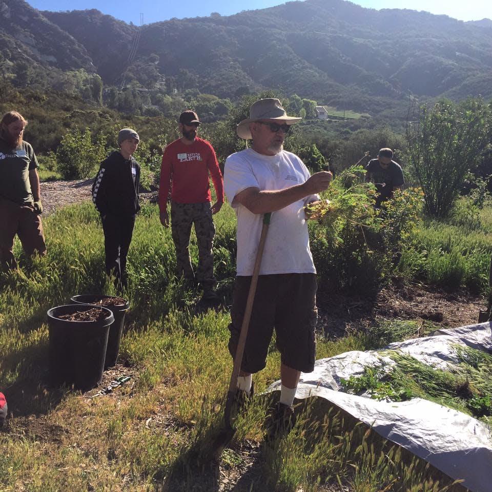 Malibu Creek State Park Restoration