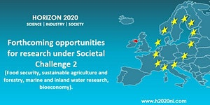 Horizon 2020: Forthcoming opportunities for research...
