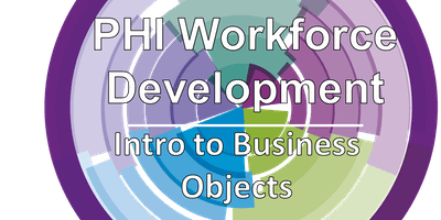Introduction to Business Objects