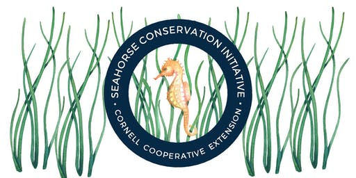 SEAHORSE CONSERVATION INITIATIVE 2019 SEINING WORKSHOP