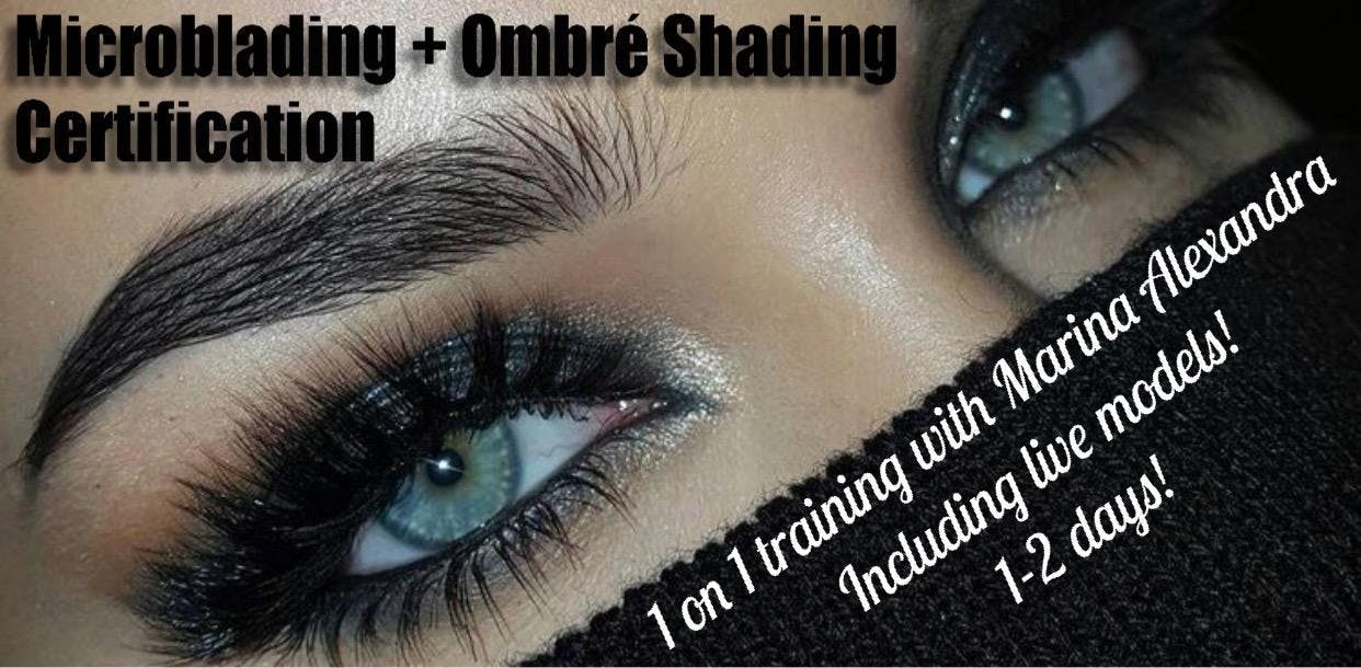 1 On 1 Private Microblading Certification Training Course Bilingual