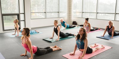 Fitness Yoga- CITY