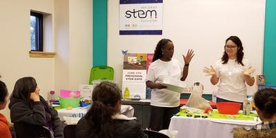 STEM Through Play: An Early Childhood Practicum Experience