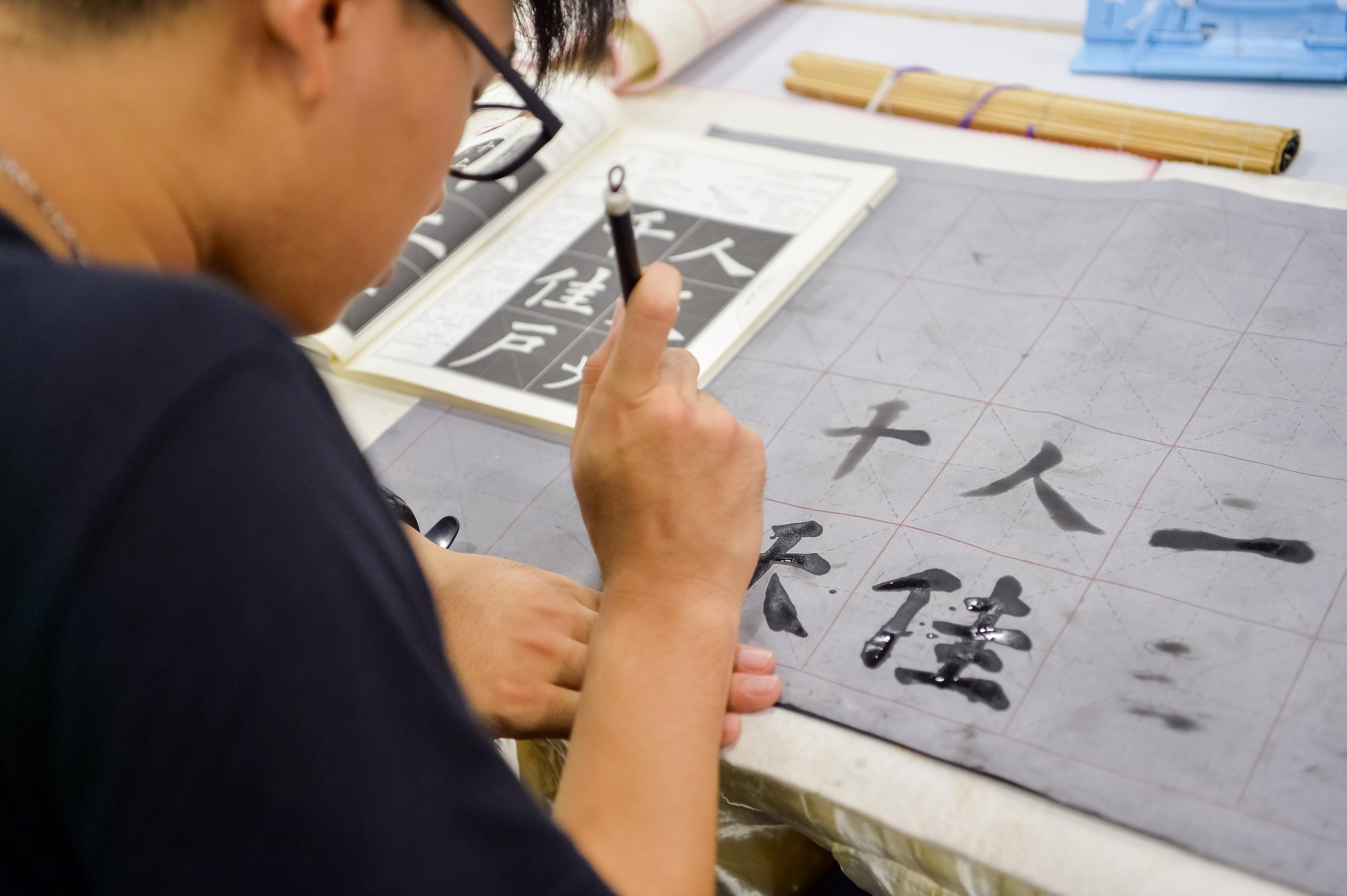 Chinese CalligraphyPainting Roashow at VBP