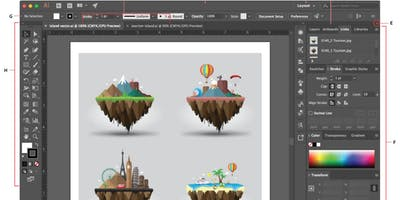 Workshop: Adobe Illustrator - Photoshop- Rieti