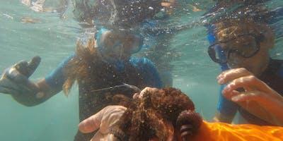Loano: Eco-pinneggiata per il Mare in 3d