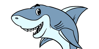 Shark Swim Lessons