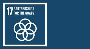 Partnership for the goals workshop