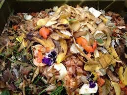 Composting and Gardening with EM1, Effective