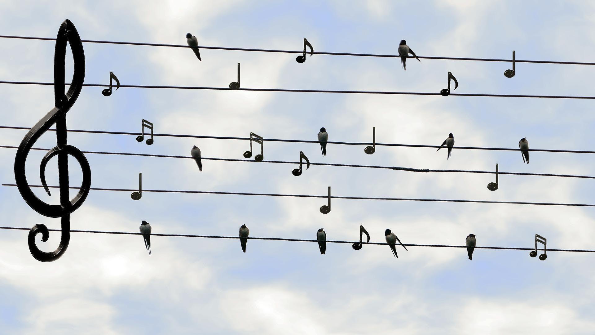 La voix, outil indispensable à l'enseignant (