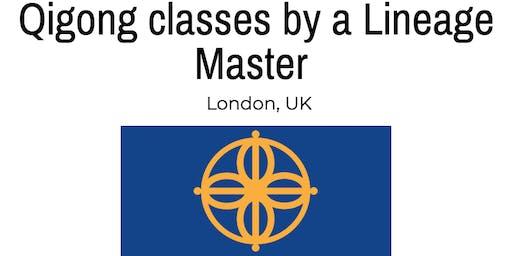 Qigong Classes London - Authentic Lineage Based North London Qigong