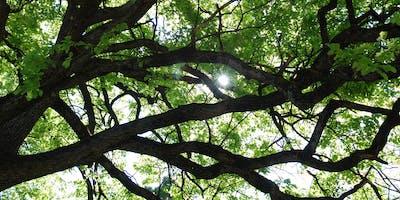 ETT European Tree Technician