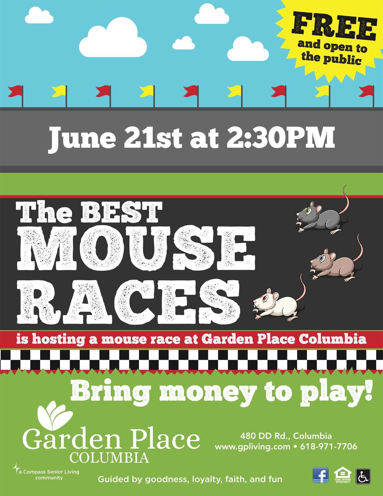 The Best Mouse Races at Garden Place Senior L