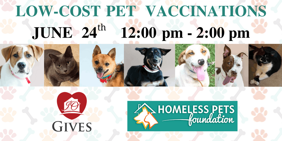 Low-Cost Pet Vaccination Clinic