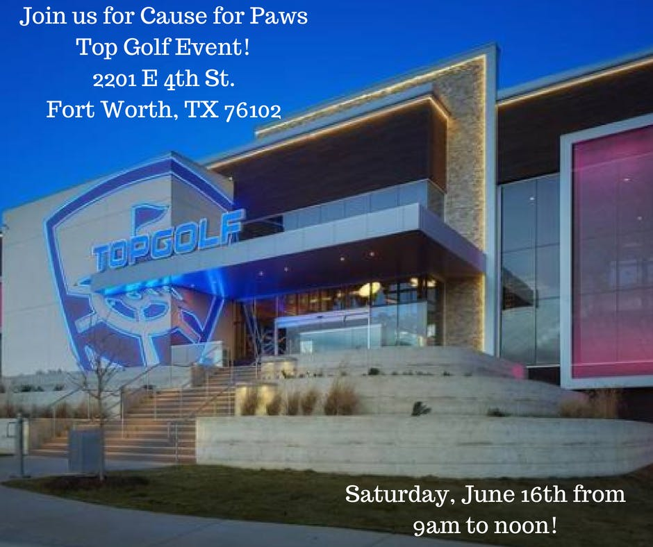 Cause For Paws Top Golf Event 16 Jun 2018