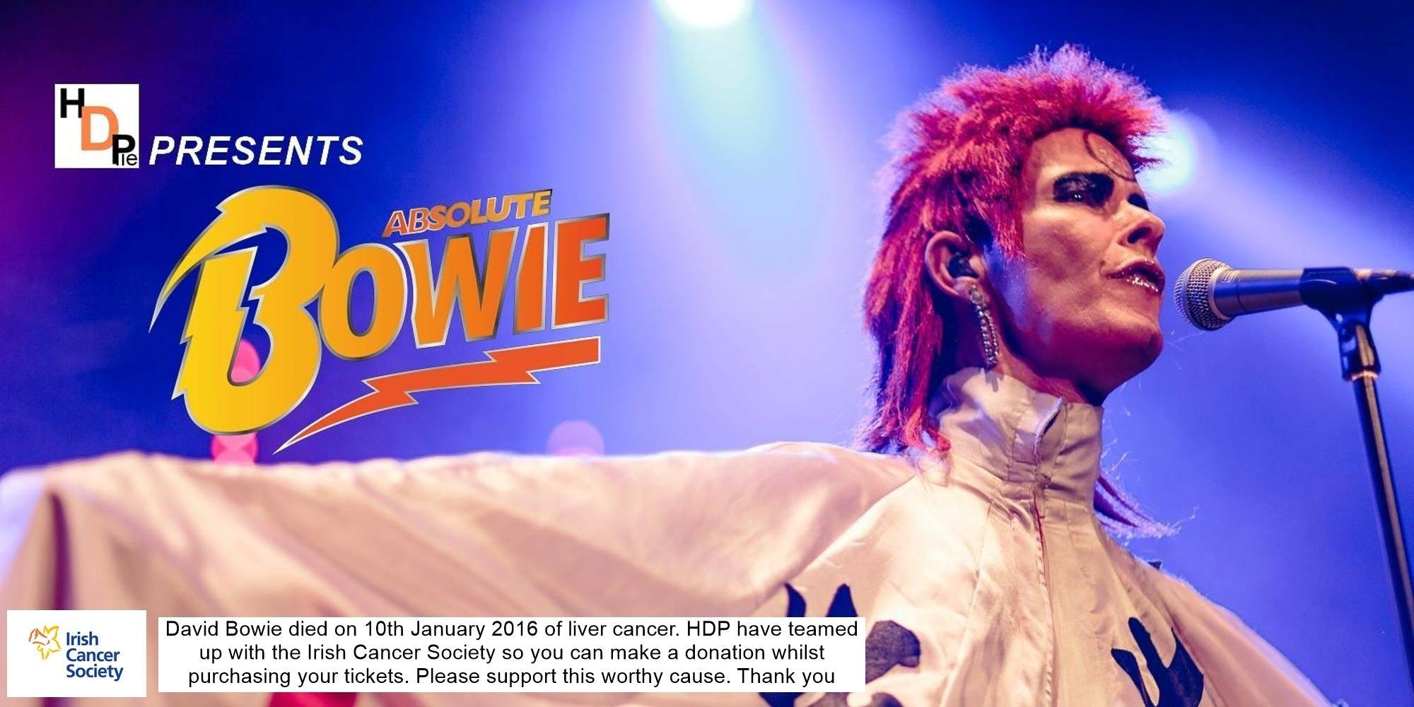 Absolute Bowie  Europe's Finest David Bowie Tribute