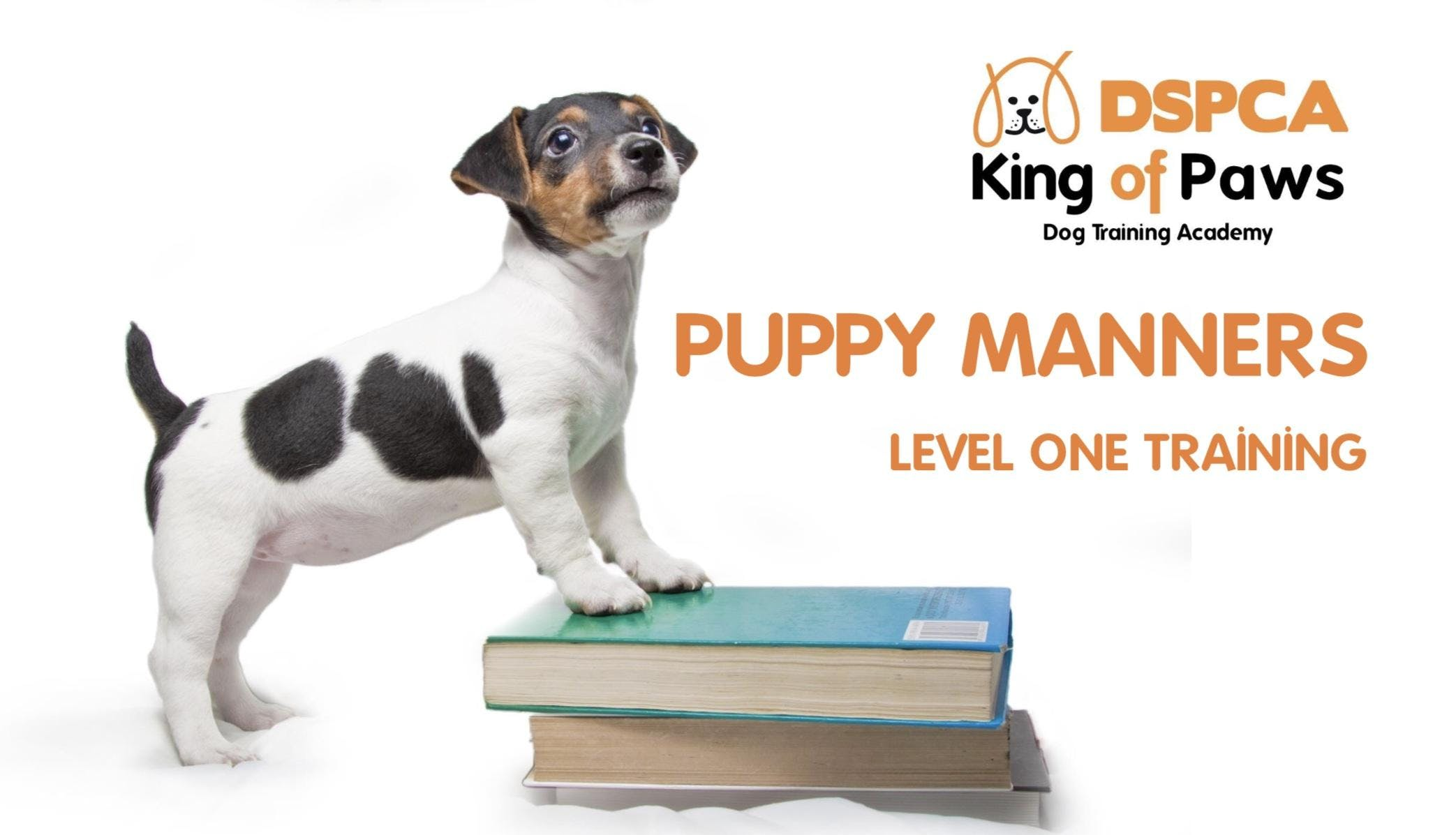 PUPPY MANNERS (LEVEL 1) Sunday, DSPCA
