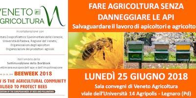 FARE AGRICOLTURA SENZA DANNEGGIARE LE API