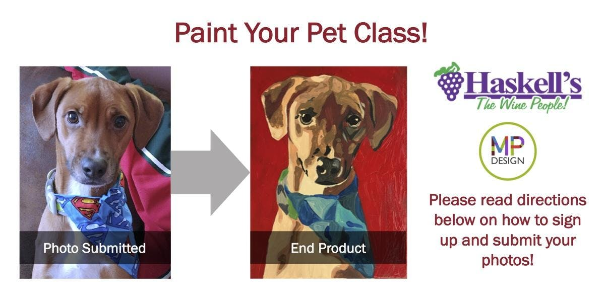 Paint Your Own Pet | Haskell's Minneapolis