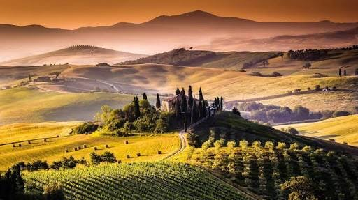 Italian Month - The Wines of Tuscany and Cent