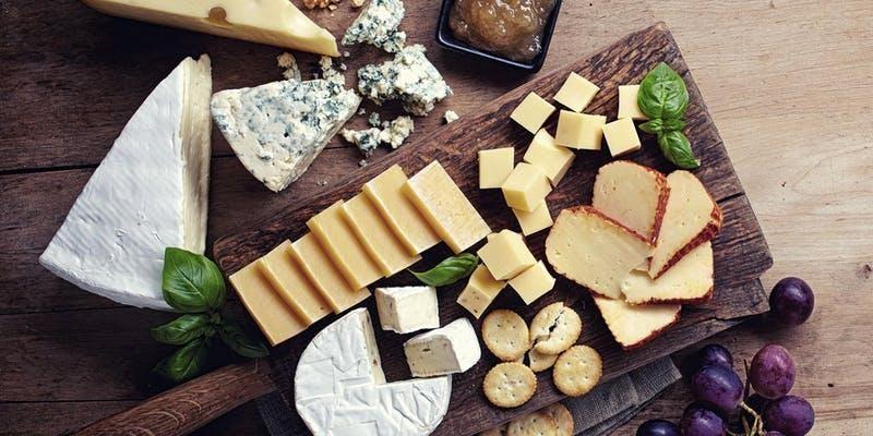 Intro to Cheesemaking