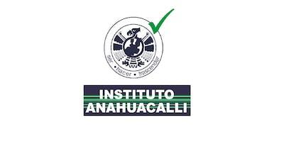 VIALIDAD ANAHUACALLI 18-19