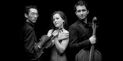 Amatis Piano Trio - Rising Stars 2018/19 spielt Haydn, Brahms und Publikumswunsch
