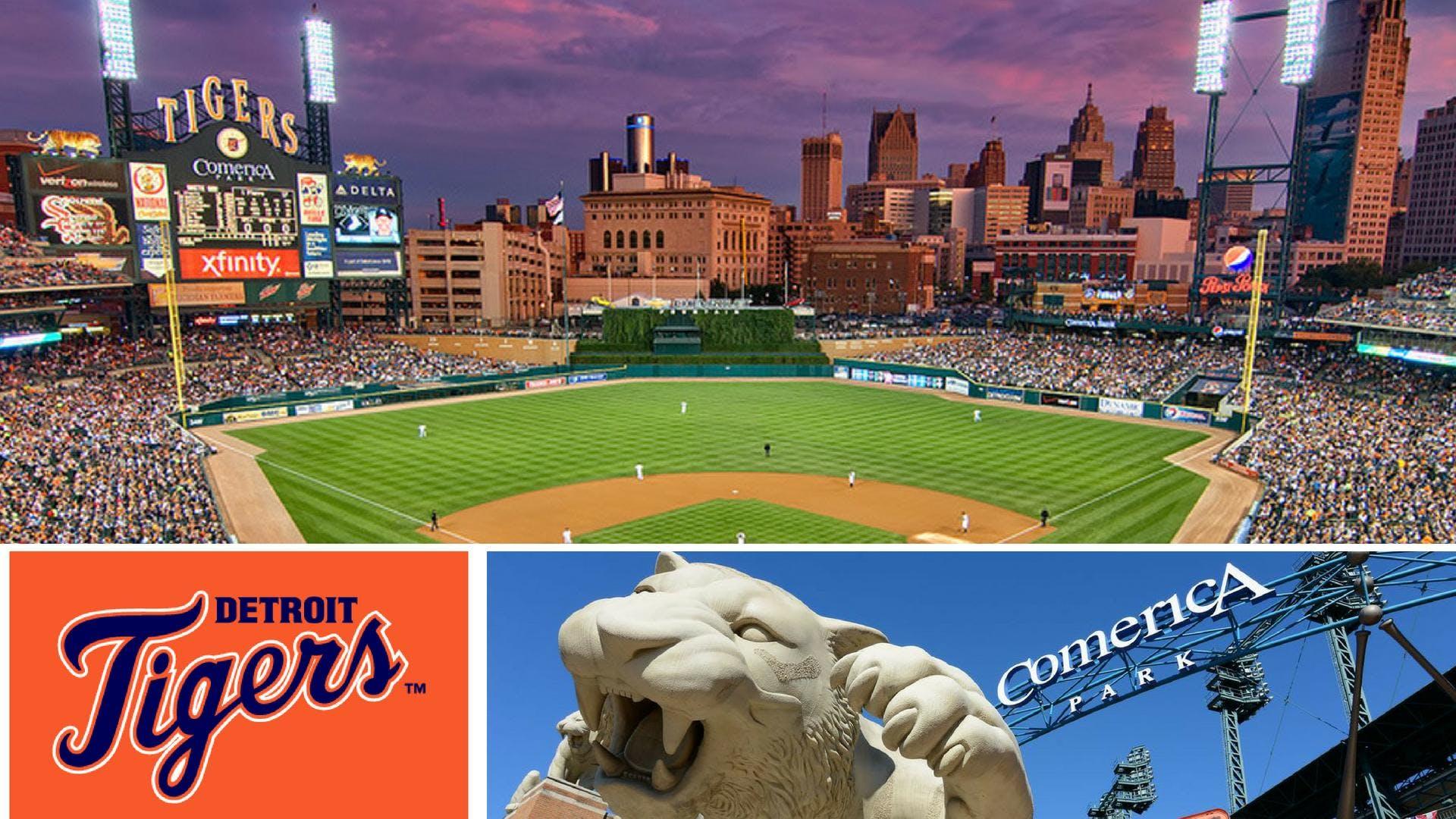 Detroit Tigers Baseball Game Round 2 7 Jul 2018
