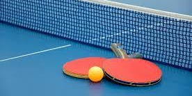 SOTX Rio Grande Valley 2019 Table Tennis Competition