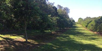 Natural Farming Soil Workshop