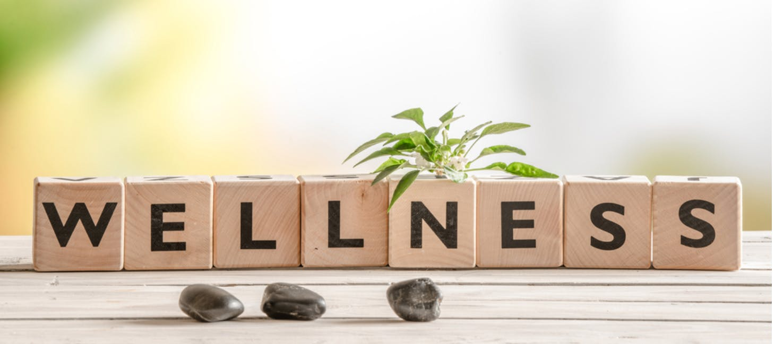 Enhance Your Wellness Workshop Series