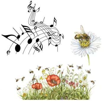 Pollinators, Music & Plants