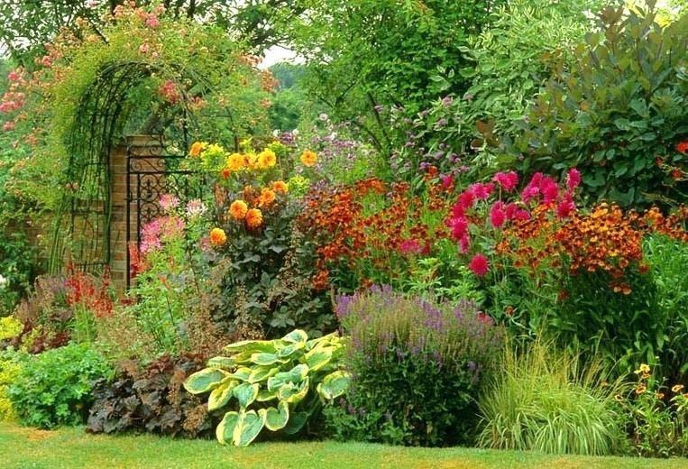 Fall Perennial Plant Exchange & Documentary