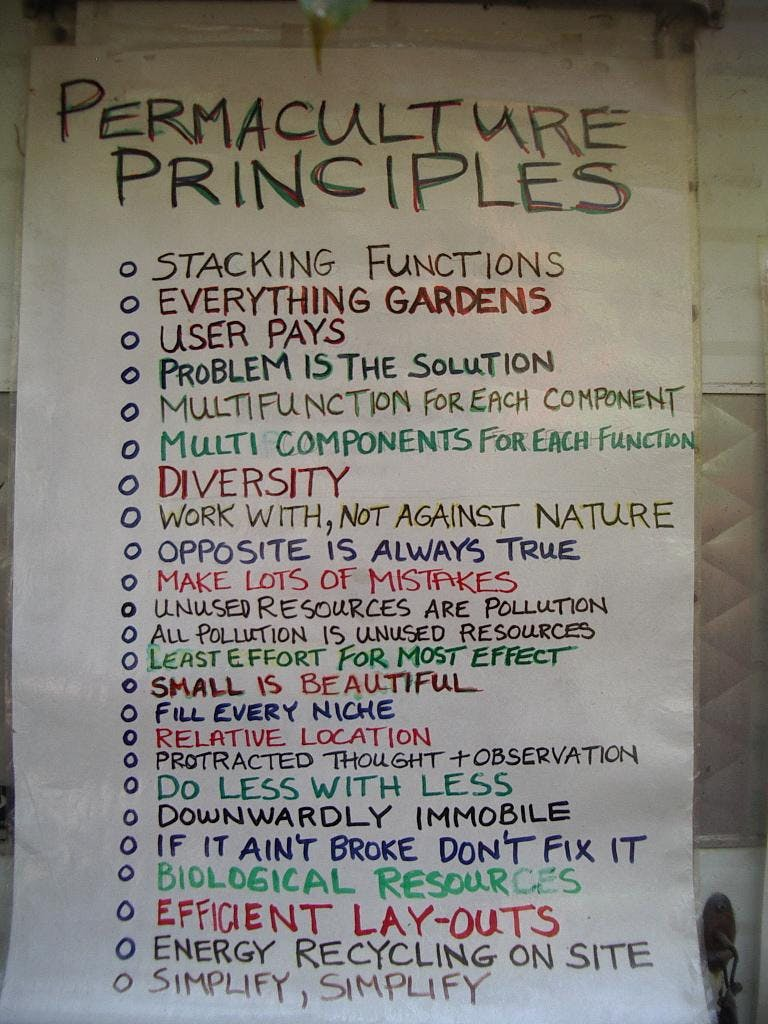 Permaculture Your Life!