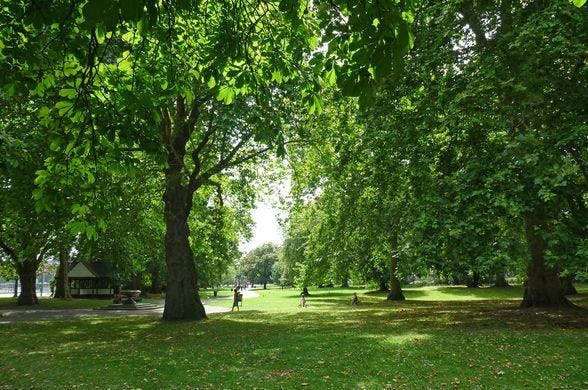 Yoga in Kennington Park