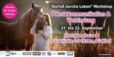 Barfuß mit Pferden in der Bergnatur - Gewaltfreie Pferdekommunikation & Verbindung