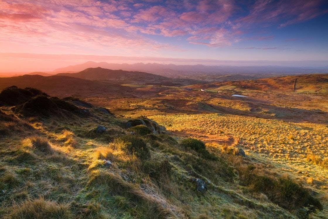 Glenelly: 'Craignamaddy Nature Walk' (Moderate)