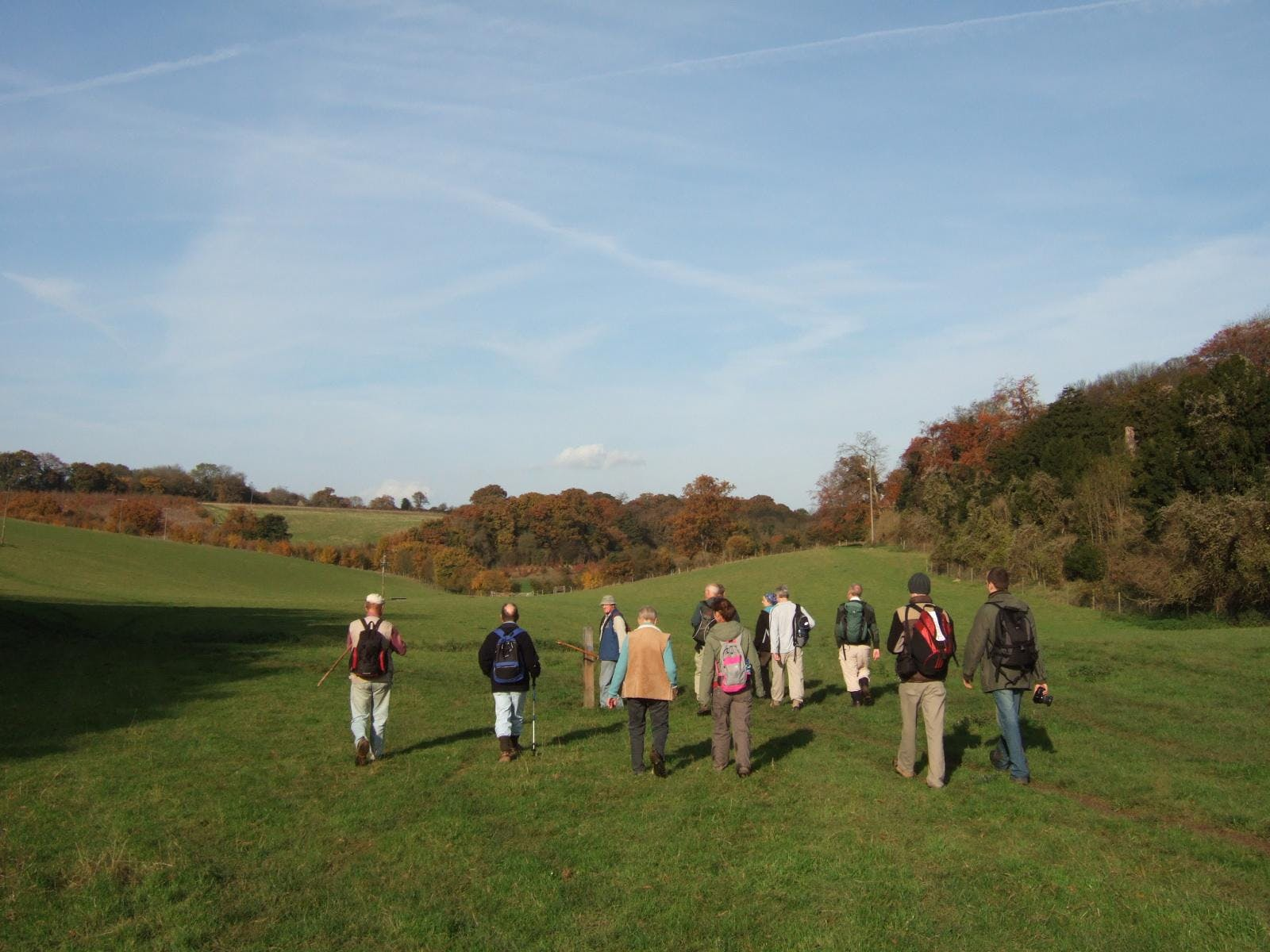 Swifts and Churches - Guided Walk - Hollingbo