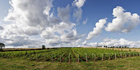 Vineyard tour and wine tasting - Burton on the Wolds, Leicestershire tickets
