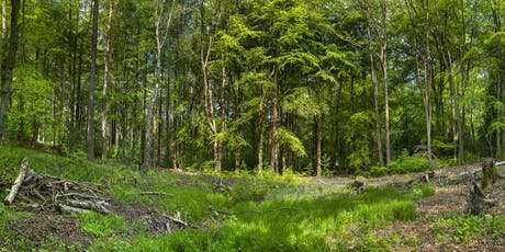 Volunteer Work Day: Greno Woods Nature Reserve tickets