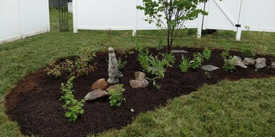 Creating a Small Native Garden