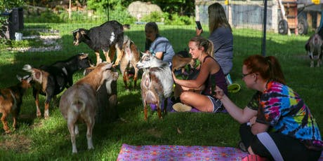 Goat Yoga In The Woods NY For Everyone tickets